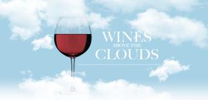 torres wine fb 28716