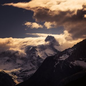 patagonia tw 23816