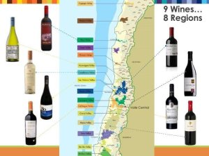 wines of chile tw 25816