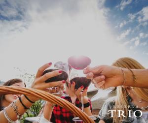 trio-cheers-fb-141016
