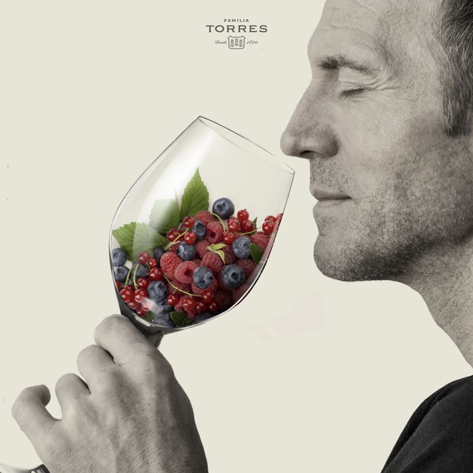 torres fruit in glass